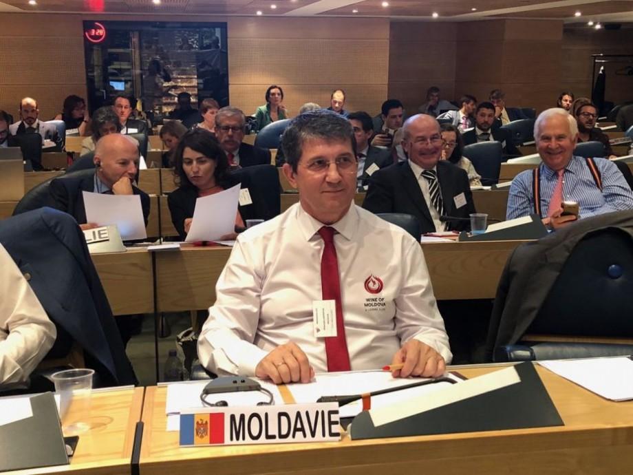 Premieră pentru sectorul vitivinicol. Moldova are o funcție importantă în cadrul Organizației Internaționale a Viei și Vinului